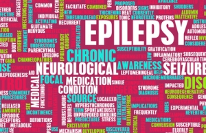 Not All Seizures are Created Equally